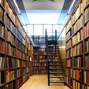 Библиотеки Фирсановки