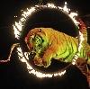 Цирки в Фирсановке
